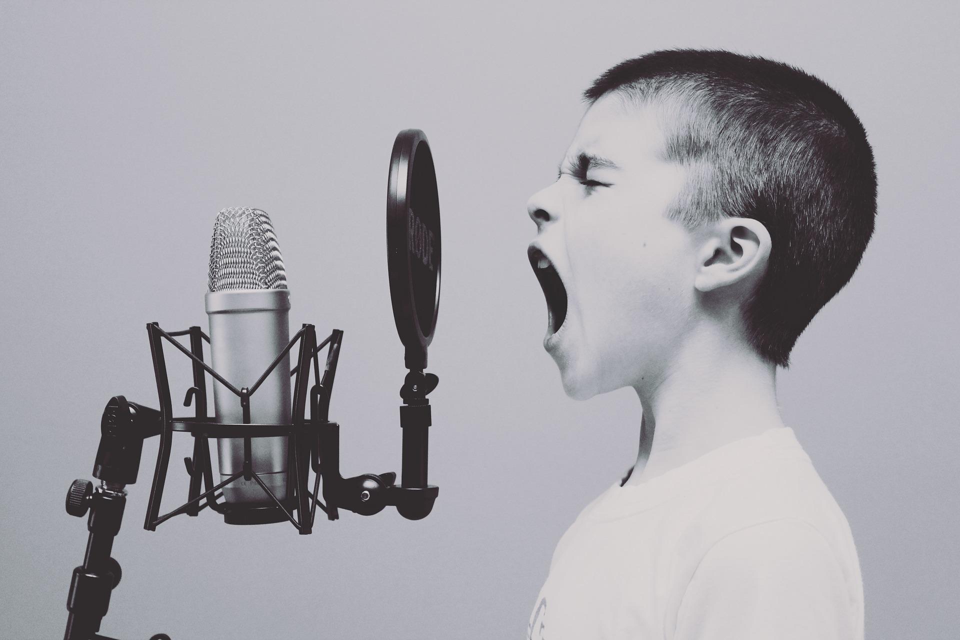 Η επίδραση της μουσικής εκπαίδευσης στη μνημονική λειτουργία παιδιών σχολικής ηλικίας
